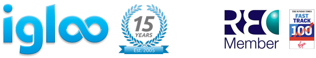 igloo 15 years logo